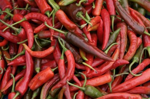 Red Chillies from Bhutan