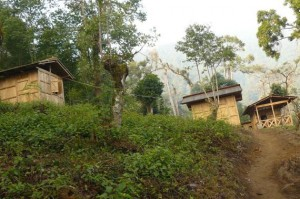 Gomphu eco-camp 2
