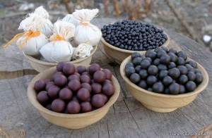 Bhutanese Traditional Herbal Medicine