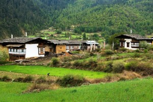 A village in Haa Valley
