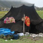 The Bjas or the black tents with a hundred pegs are used by the Bjobs, a semi-nomadic tribe who live in the higher mountains of Bhutan. They rear yaks and making a living off yak products.